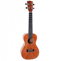 SOUNDSATION UKU-120